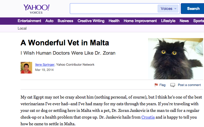 A Wonderful Vet in Malta   Yahoo Voices   voices.yahoo.com